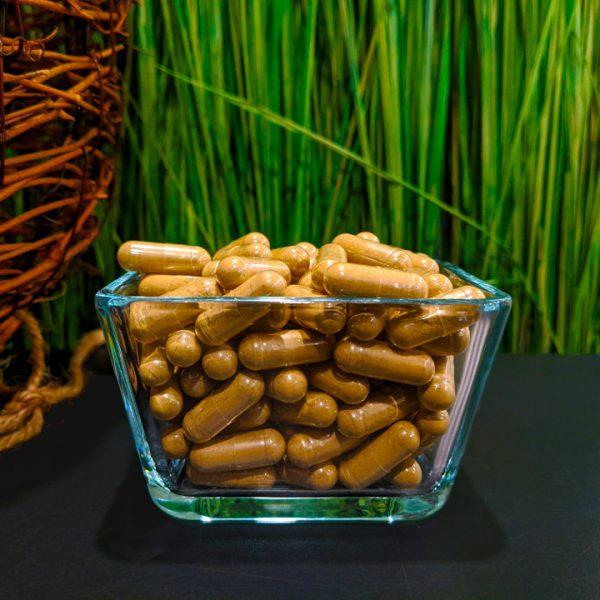 Bali capsules 2